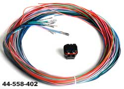 Holley J2B connector and Harness