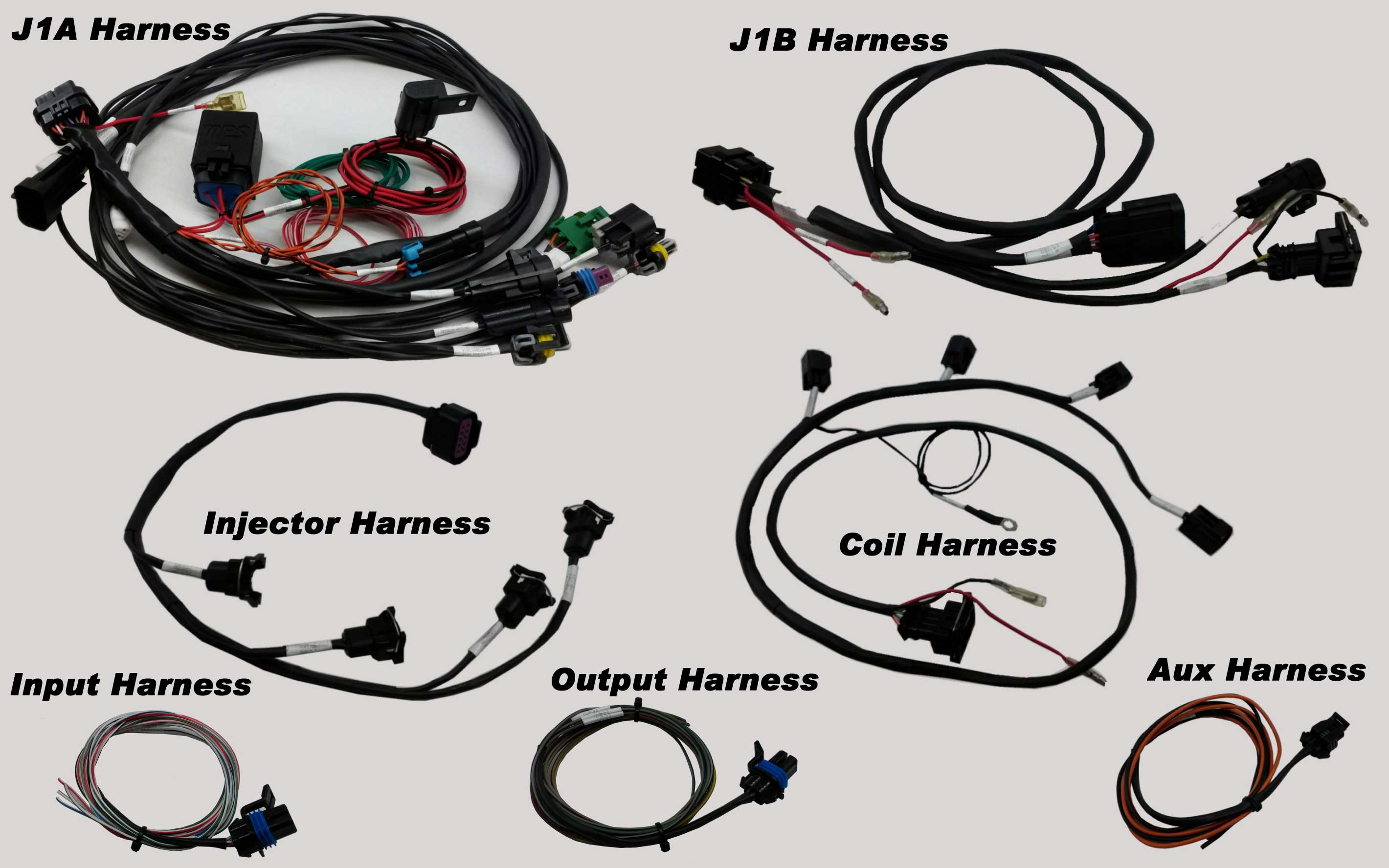 MPS Racing - Holley EFI Wiring on